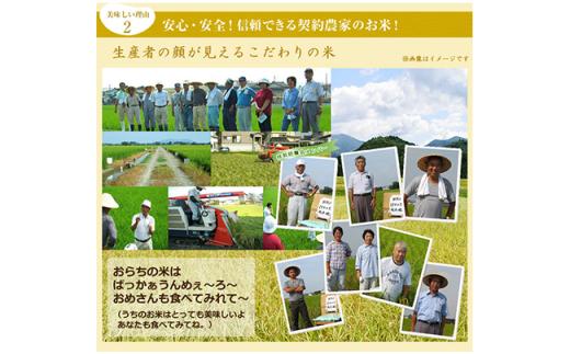 新潟県産長岡特栽コシヒカリ(5kg×2)
