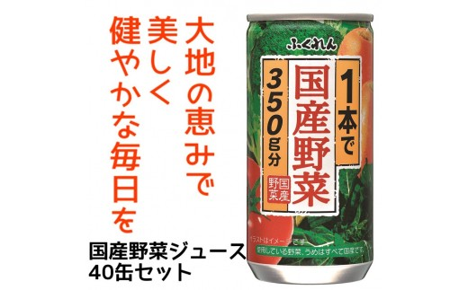 B42【2ヶ月に1度お届け】1本で国産野菜350g分 野菜ジュース195g40缶セット