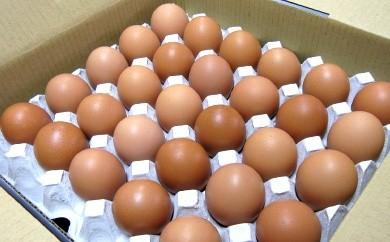 ビタミンEが豊富な治郎さんの新鮮たまごLサイズ厳選30個