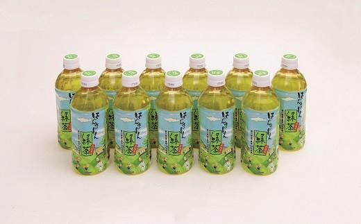 B-11ほんまもん緑茶
