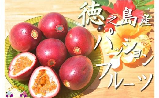 4 【先行予約】てぃだ(太陽)が育てた徳之島産パッションフルーツ(2kg)