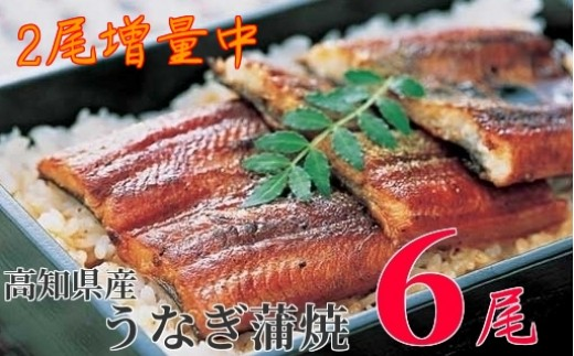 010-1.【5月限定】高知県産うなぎ蒲焼 長焼4尾+2尾 (無頭 計880g)