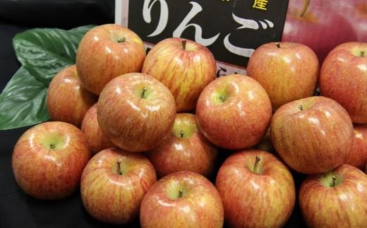 【C034】青果市場厳選 りんご10kg(青森県または長野県産 約40玉)