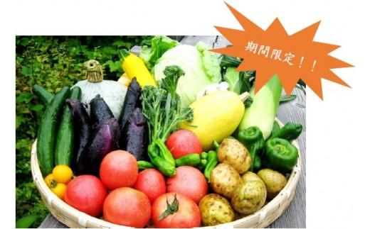 尾瀬の郷 野菜セット