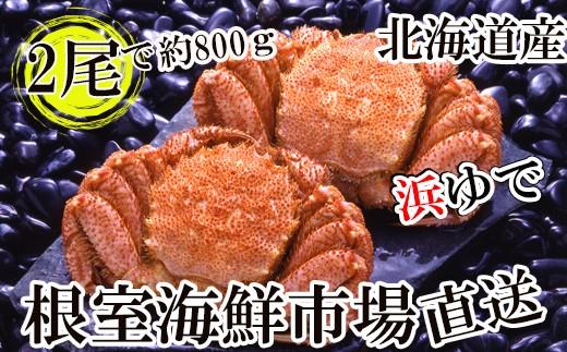 CA-22033 根室海鮮市場<直送>北海道産浜茹で毛がに350~450g×2尾[431786]