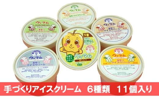 18-8 手づくりアイスクリーム 11個(6種)
