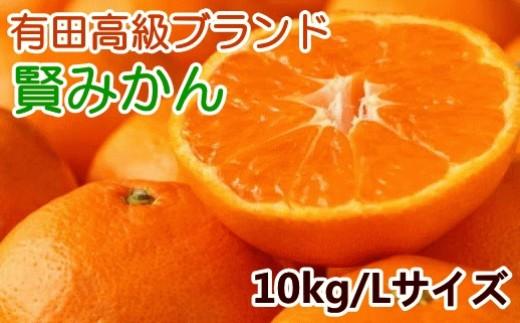 [№5745-0874]有田みかんのブランド「賢みかん」10kg(Lサイズ・赤秀)