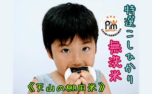 B183-O 棚田米《コシヒカリ【巧味】無洗米》2㎏×4袋(真空パック)