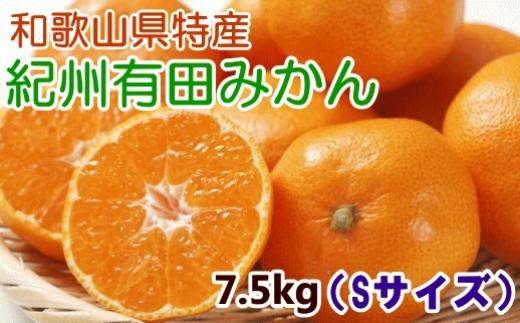 [№5745-0863]【厳選・産直】紀州有田みかん7.5kg(Sサイズ・赤秀)
