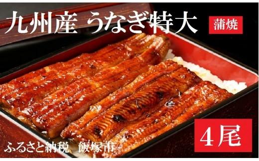 【B-054】土用丑の日配送!魚市場厳選 九州産うなぎ蒲焼(特大サイズ4尾)<先行予約>