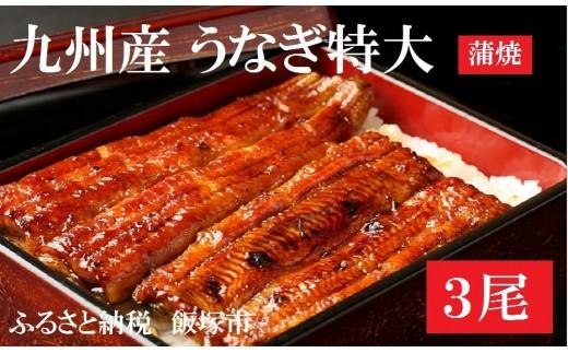 【A5-047】土用丑の日配送!魚市場厳選 九州産うなぎ蒲焼(特大サイズ3尾)<先行予約>