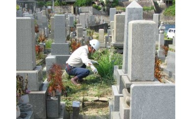 墓掃除 Bプラン