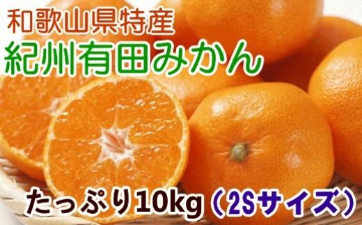 [№5745-0791][厳選]紀州有田みかんたっぷり10kg(2Sサイズ)