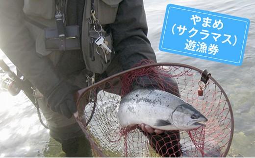 [№5770-0160]九頭竜川 やまめ(サクラマス)年間遊漁券(2019年)