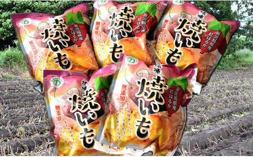 819 <無添加>あま~いサツマイモ『紅はるか』冷凍焼いも 2.5kg