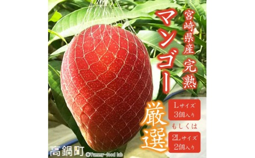 298_my <宮崎県産完熟マンゴー>平成30年4月末~7月末頃迄に順次出荷
