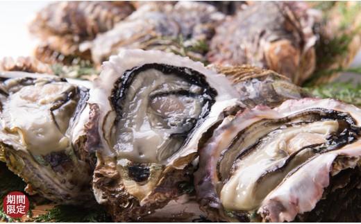 【A68】岩牡蠣