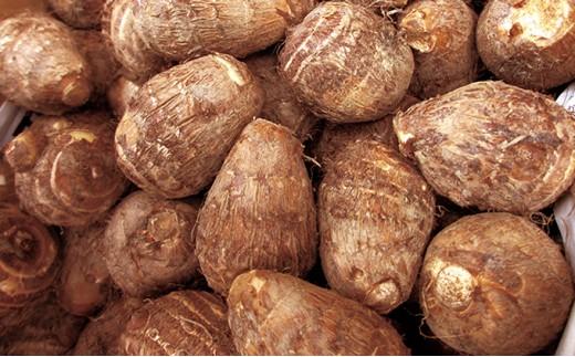 [№5884-0187]特別栽培 減農薬 ねっとりうまい上庄里芋3kg