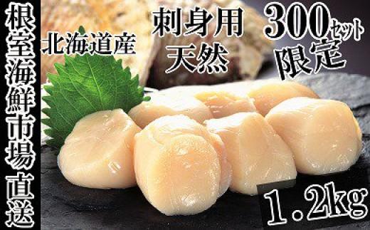 CA-14071 根室海鮮市場<直送>北海道産刺身用ほたて貝柱1.2kg(36~48玉)[430344]