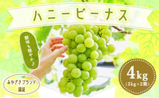 A246 【季節・数量限定】極甘『尾鈴産』ハニービーナス 4kg