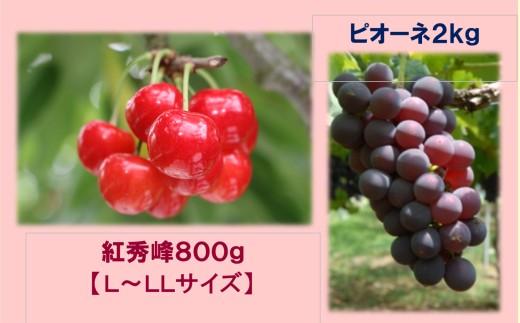 A-323 30年_さくらんぼ「紅秀峰」800gバラ詰め&ぶどう「ピオーネ」2kg