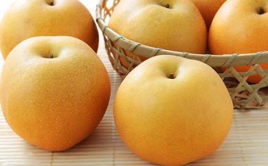 [№5862-0695]【数量限定】30年産フルーツの郷いせはら 豊水 5kg