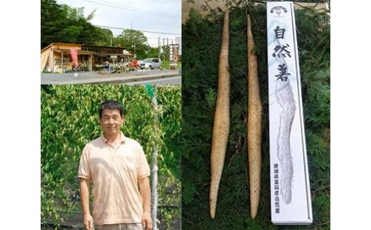 O-3 エコファーム星山の自然薯 2本(約1.5kg)
