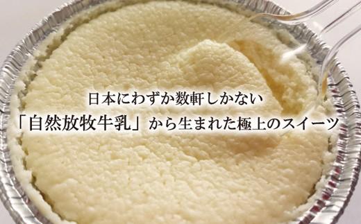 141.【邑南町産】ちびチーズケーキ 12個セット【自然放牧牛乳使用】