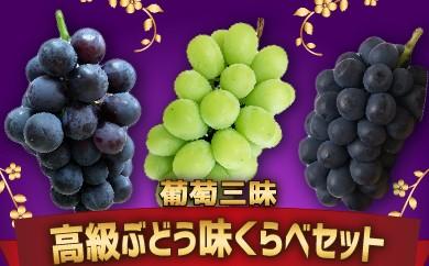 【受付終了】萄三昧 高級ぶどう 味くらべセット 旬の味覚市場