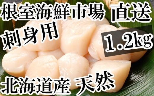 CA-22030 根室海鮮市場<直送>北海道産刺身用ほたて貝柱1.2kg(36~48玉)[431783]
