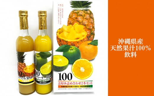沖縄県産天然果汁100%飲料 2本セット