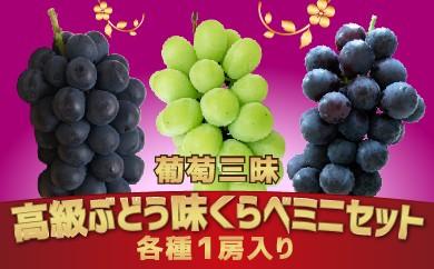 【受付終了】葡萄三昧 高級ぶどう 味くらべ ミニセット 旬の味覚市場