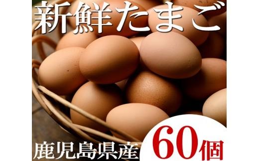 A-111  薩摩ヤブサメ酵素卵60個入 ㈲ヤブサメファーム