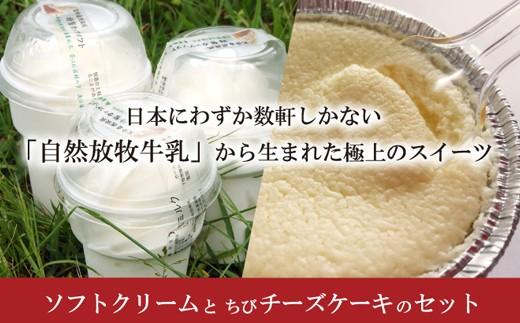 142.ソフトクリーム+チーズケーキセット【自然放牧牛乳使用】