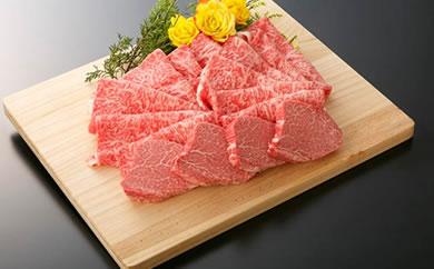 大府市特産A5ランク黒毛和牛 極上ヒレステーキ130g×4枚入り + 極上ロース肉すきしゃぶ用1kg