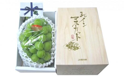 [№4631-1388]香川県産 極上シャインマスカット 大房1房化粧箱入り