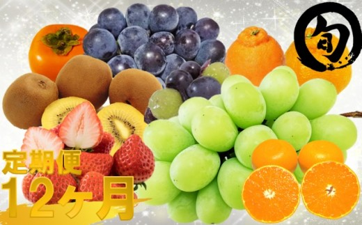 330 さぬき八百虎厳選!ひと口食べると忘れられない旬な果実ご自慢品セット