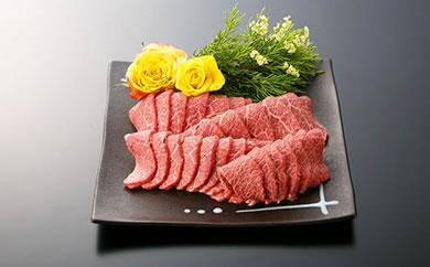 大府市特産A5ランク黒毛和牛 特選焼肉セット(カタ・モモ・バラ肉などの中から最高の部位をご提供)500g