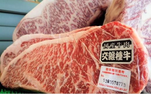 [№4631-1395]どどんと大きめ 300g×2 交雑種(F1)牛【ロースステーキ】