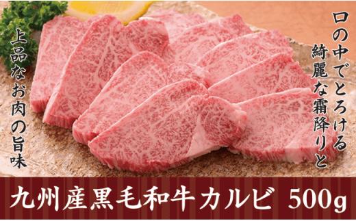 N10-13 A1a【極旨!】九州産黒毛和牛カルビ500g