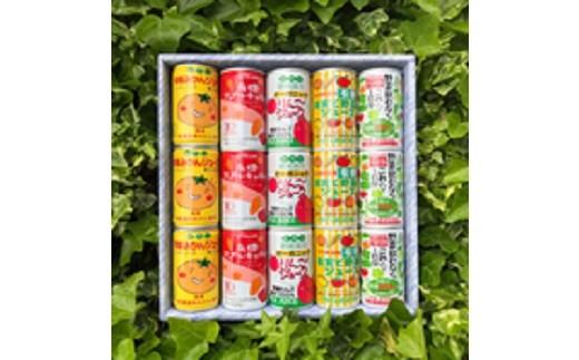 10SA05 有機ジュース詰め合せ15本