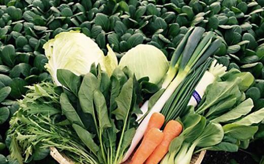 228.弥栄産 旬の野菜おまかせセット