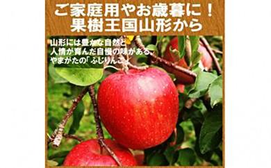 [№5922-0459]山形県産 サンふじ約10kg・秀品40~46玉