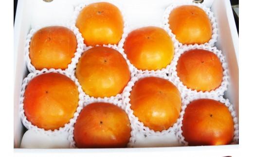 D83 温室新秋柿【個数限定!】