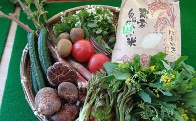 [№5922-0454]山辺産お米5kgと野菜・果物(3~7品程度)セットA