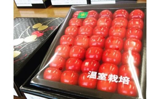 ハウスさくらんぼ『紅秀峰』300g 化粧箱 特秀 3L~2L