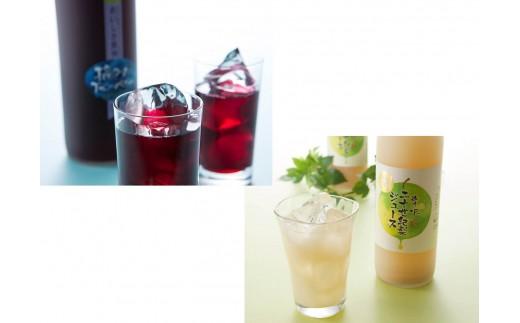 D-13 贅沢20世紀梨ジュース2本箱3セット&ブルーベリードリンク2本箱1セット