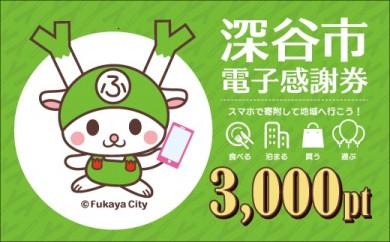 [№5674-0342]深谷市 電子感謝券 3,000pt