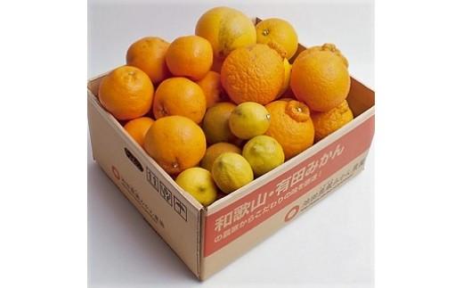 [№5745-0758]【特別栽培】 柑橘詰合せ