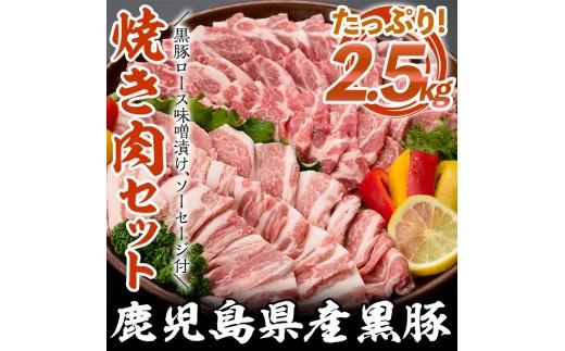 A09 鹿児島県産黒豚焼肉セット 豚肉バラ、ロース肉、骨付きソーセージなど 計2.55kg【ナンチク】